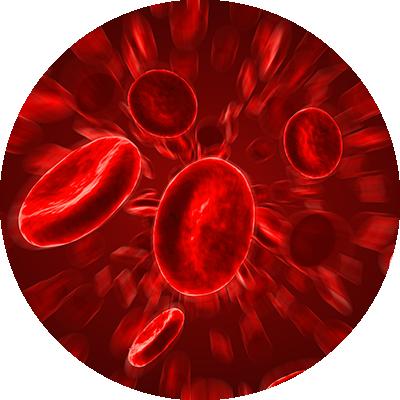 血管が拡張することで血行促進